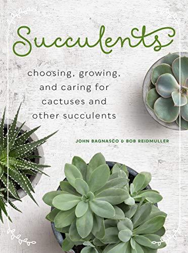 Bagnasco, J: Succulents