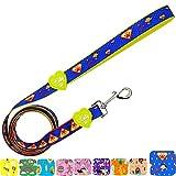 Correa de poliéster Premium para Perro, Mango Acolchado Suave para Paseo o Entrenamiento de Mascotas Correa de Perro Mediano, Grande o Perro pequeño (Color Azul)