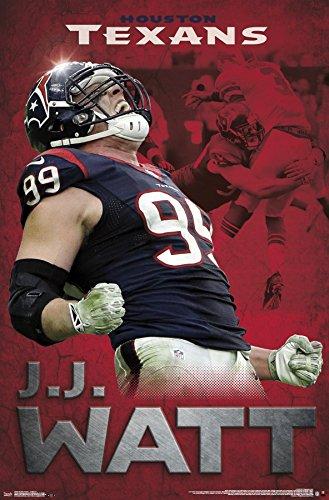 J.J. Watt Houston Texans Roar NFL Poster RP14054