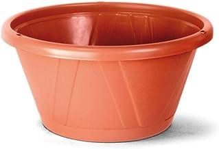 Kit Vaso Cuia Nobre 0 com prato cerâmica com 12 unidades