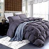 Grandeur Linens Luxurious Goose Down Comforter Duvet Insert, Premium Pinch Pleat Design, 1200 Thread Count 100% Egyptian Cotton, 750+ Fill Power, 70 oz Fill Weight (King-Gray)