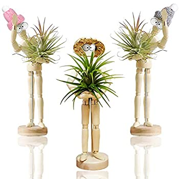 Melphoe Puppy s Mom 3 Pack Air Plant Holder Wooden Jointed Mannequin Tabletop Flexible Shape Adjustable Pose & DIY Accessories Decor Planter Tillandsia Air Fern Display Stand for Home Office  3pack