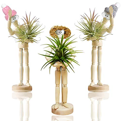 Melphoe Puppy's Mom 3 Pack Air Plant Holder Wooden Jointed Mannequin Tabletop Flexible Shape...