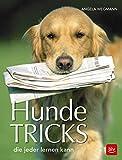 Hundetricks: die jeder lernen kann