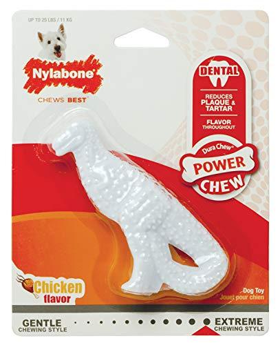 4. Nylabone Dental Dinosaur Dog Chew Toy
