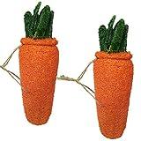 xydz 2pcs gioco per roditori fatto a mano a forma di carota pet masticare giocattolo paglia a forma di carota per coniglio cane criceto dente di pulizia giocattoli cura sana