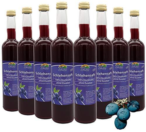 Bleichhof Schlehensaft - 100% Direktsaft, naturrein und vegan, OHNE Zuckerzusatz, 8er Pack (8x 0,47l)