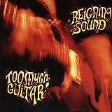 Songtexte von Reigning Sound - Too Much Guitar