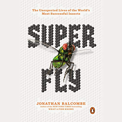 Super Fly cover art