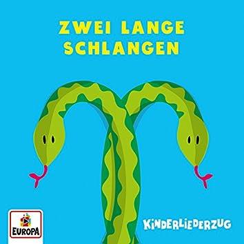 Zwei lange Schlangen