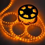 DELight Outdoor LED Rope Lighting 50ft Saffron w/ Connector
