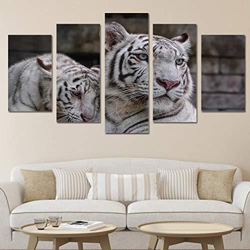 5 Piezas - Impresión en Lienzo - Lona de 5 piezas Tigres blancos Cuad