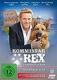 Kommissar Rex - Comeback in Rom (Staffeln 11-13) (Die Fortsetzung der SAT.1-Krimiserie in Rom)...