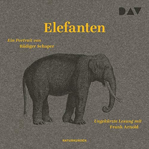 Elefanten: Ein Portrait