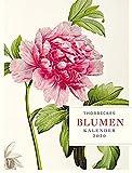 Thorbeckes Blumen-Kalender 2020