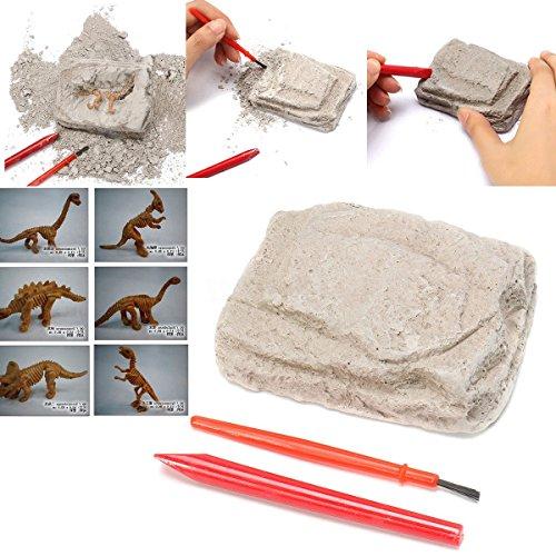Uniqstore Kit de excavación de Dinosaurios arqueología excavar Esqueleto fósil Regalo...