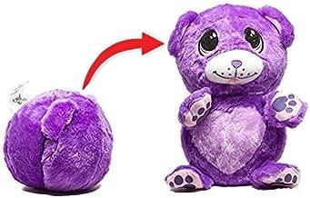 bear on a ball