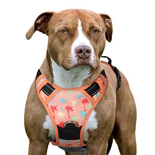 Eagloo Hundegeschirr Geschirr für Kleine und Mittlere Hunde Anti Zug Brustgeschirr No Pull Sicherheitsgeschirr Auto Dog Harness Labrador Welpengeschirr Joggen Weich Sommer Ferien Urlaub Ruhe