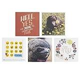 Hallmark Studio Ink - Tarjetas de cumpleaños (5 tarjetas con sobres)
