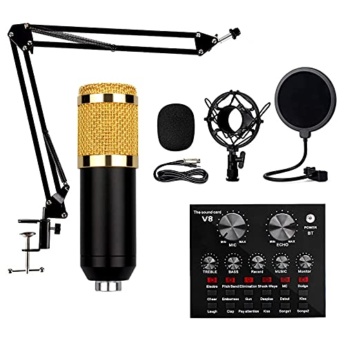 Kondensatormikrofon, BM-800 Podcast Mikrofon, Microphone PC mit V8 Soundkarte und Mikrofonarm, XLR Mikrofon Kit für Streaming, YouTube Video, Gaming