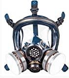 Organic Vapor Respirator full face gas mask with Double Activated Carbon Air Filter (Black)