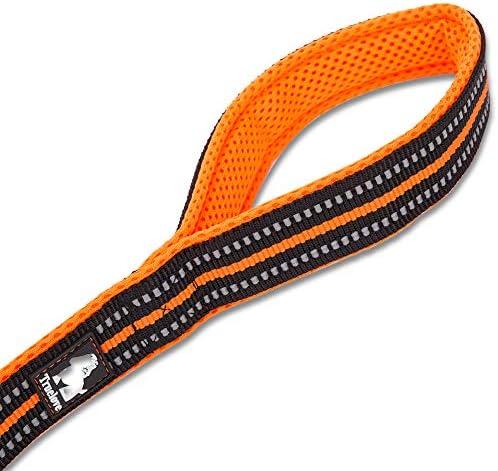 TRUE LOVE Laisse Réfléchissante pour Chien Longueur 200cm TLL2111 (Orange, M)