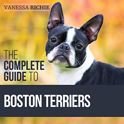 The Complete Guide to Boston Terriers Titelbild