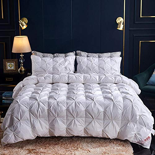 CHOU DAN Double Duvet,95 Duvet White Goose Down Thickened Winter Quilt Duck Down Single And Double Warm Quilt Spring And Autumn Quilt Cotton-220x240cm 4000g_elegant White Cotton Feather-Proof Cloth