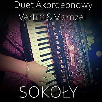 Sokoly