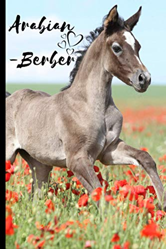 Arabian-Berber Horse Notebook For Horse Lovers: Composition Notebook 6x9' Blank Lined Journal