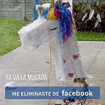 Me Eliminaste de Facebook