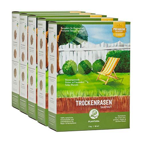 Plantura Trockenrasen, 10 kg, wassersparende Rasensamen für trockene Regionen, Premium-Saatgut