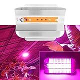Lampada da coltivazione, piante da interno COB LED Lampada da coltivazione a spettro completo Lampada da coltivazione 220V 30W 50W 80W(30W)