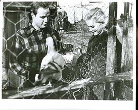 "Marlon Brando Eva Marie Saint On The Waterfront 8x10"" Photo #G6410"