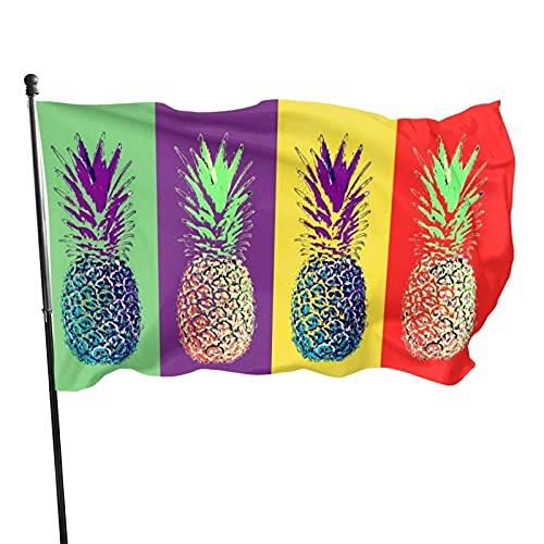 Bandera de jardín Bandera de piñas Coloridas Color Vivo y Resistente a la decoloración UV Bandera de jardín de Bienvenida Bandera de decoración de jardín 90 x 150 cm