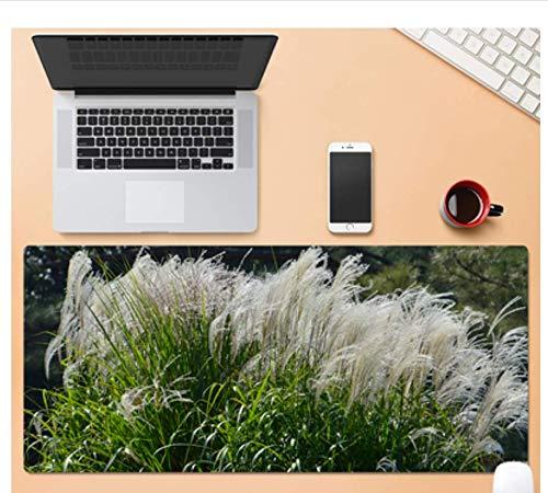 Übergroßes Gaming-Mauspad, Exquisite Aloe-Pflanze, Verschleißfestes Und Haltbares Gummi, Laptop-Office-Gaming-Mauspad
