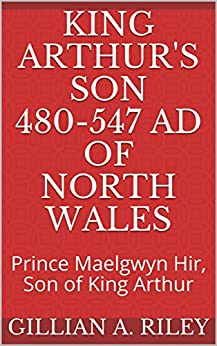 Book cover image for King Arthur's Son 480-547 AD of North Wales