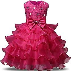 Rose Kids Ruffles Lace Party Dress
