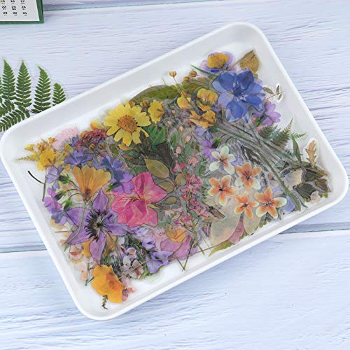 RisyPisy 160pcs Natural Sticker Set, Blumen- und Pflanzenaufkleber, Verschiedene speziell geformte botanische Aufkleber für Heimwerker, Planer, Bullet Journal, Notizbuch, Laptop, Handy, Kalender