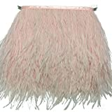 KOLIGHT Pack of 2 Yards Natural Dyed Ostrich Feathers Trim Fringe 4inch for DIY Dress Sewing Crafts Costumes Decoration (Pale-Pink)