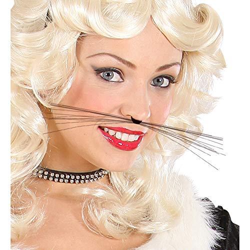 - Katze In Die Kostüme