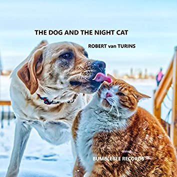 The dog and the night cat