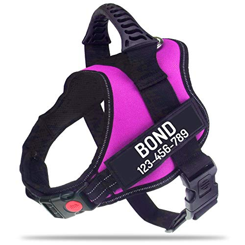 Dog Harness With Name