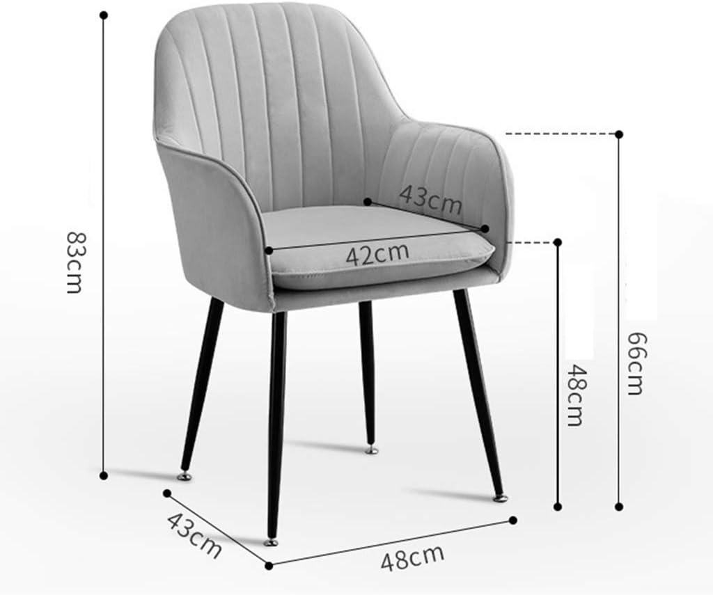 LSRRYD Lot de 6 Chaises de Salle à Manger avec accoudoirs, Chaise de Salon Structure en métal et Assise en Velours Rembourrée Chaise de Cuisine (Color : Purple) Gray