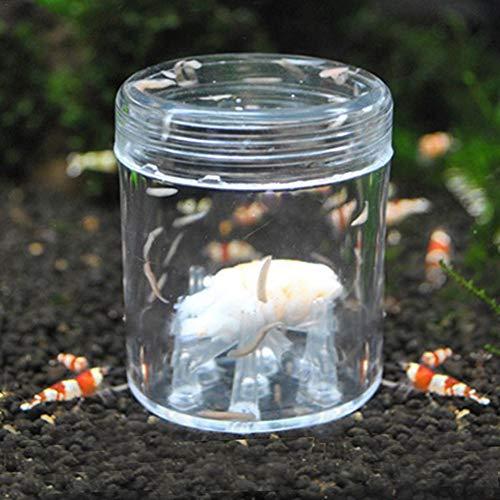 schneckenfalle aquarium schnecken im aquarium entfernen schneckenfalle für aquarium aquarium schneckenfalle aquarium-Schneckenfalle Aquarium aus Acryl mit 8- Löchern Innovative Köderfalle