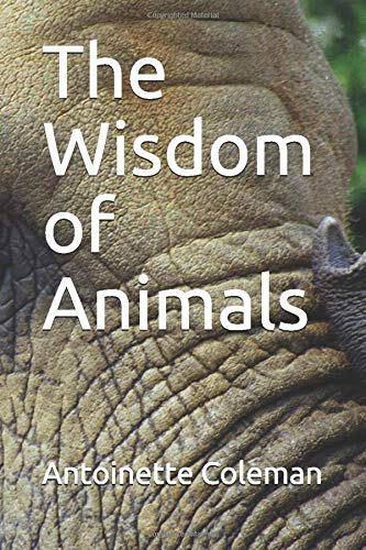 Top 10 best selling list for wisdom animal