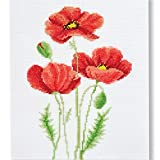 Counted Cross Stitch Kit 'Poppies' | Poppy Wildflowers Hand Embroidery Set | DIY Handmade Gift for a Loved One