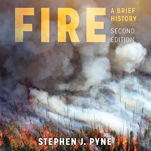 Couverture de Fire: A Brief History