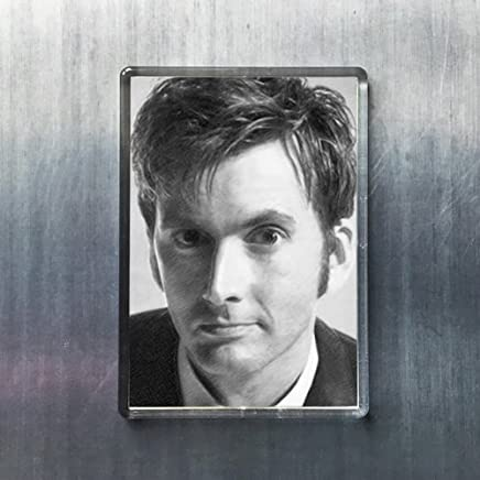 Seasons David Tennant - Original Art Fridge Magnet #js002
