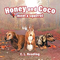 Honey and Coco meet a squirrel